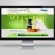 N. Sándor masszőr - bemutatkozó weboldal készítés - mobilbarát weboldal tervezés